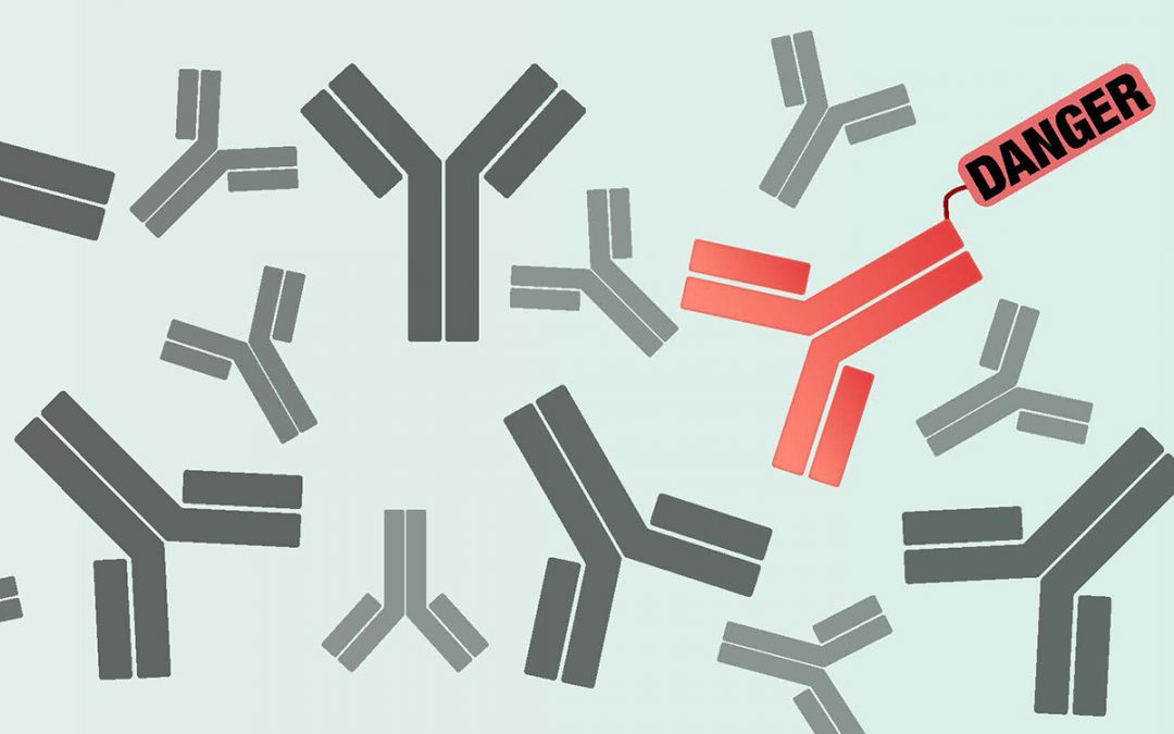 Antibody identifier could speed development of therapies for cancer, other diseases