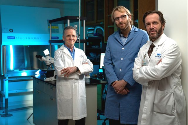 UCLA researchers develop mechanism for characterizing function of rare tumor cells