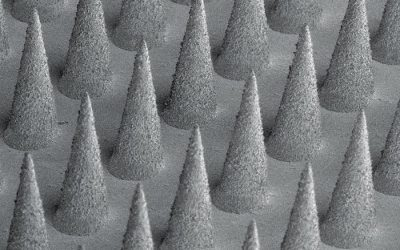 Microneedle patch encourages hair to regrow