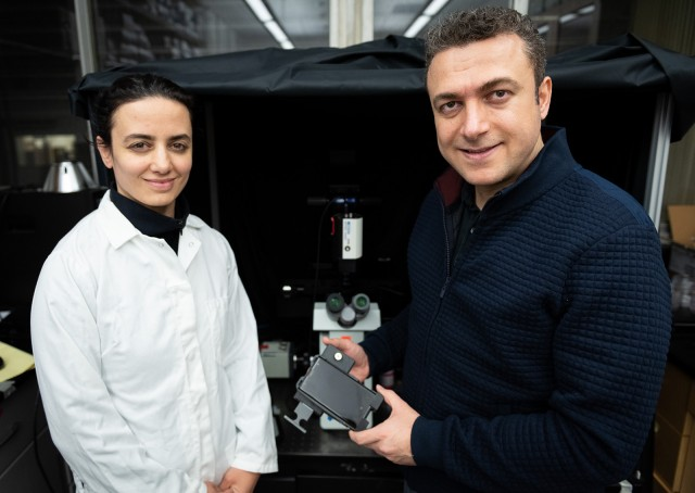 UCLA researchers develop smartphone-based microscope to detect lethal bee parasites